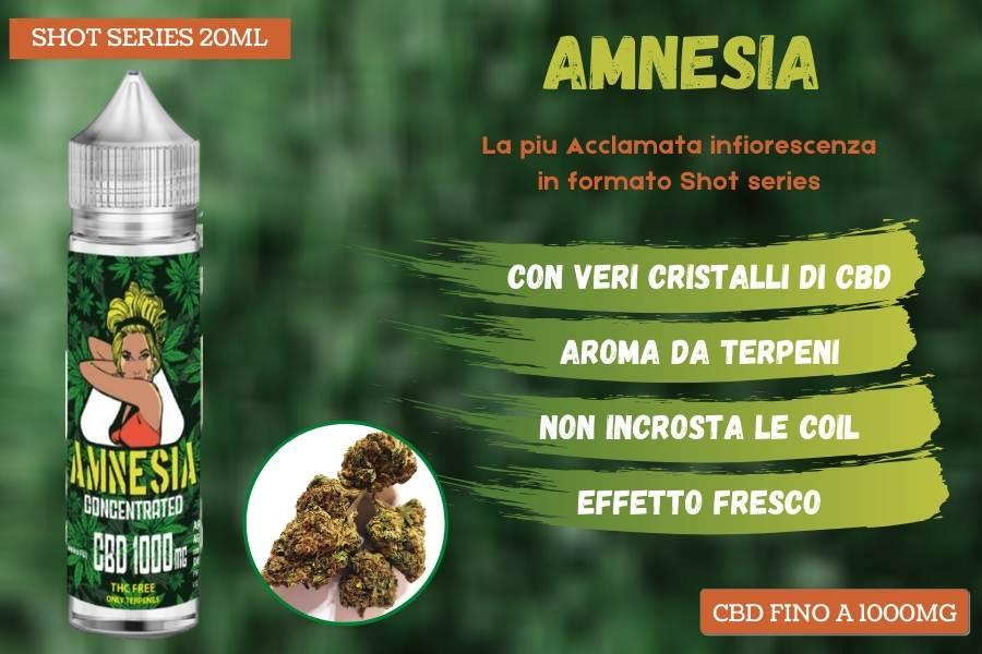 Amnesia, il profumatissimo concentrato di CBD al gusto Cannabis